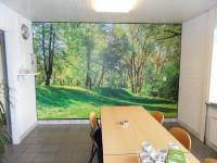 Muursticker (B), natuur, bos, bomen