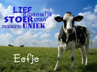 muursticker_kinderkamer_full-colour_dieren_012_